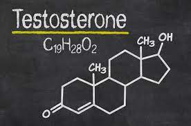 does sex increase testosterone